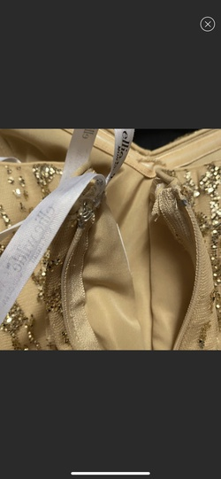 Ellie Wilde Gold Size 14 Plus Size Tall Height Mermaid Dress on Queenly