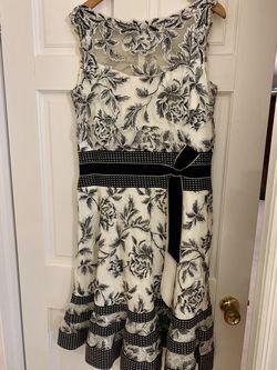 Tadashi  Shoji Multicolor Size 14 Plus Size Lace Wedding Guest A-line Dress on Queenly