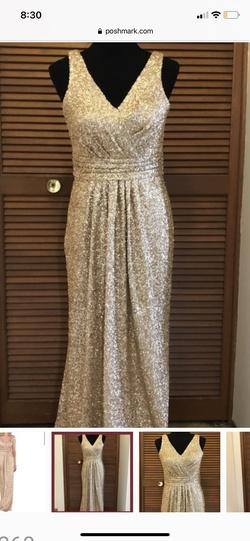 Sorella Vita Gold Size 24 Straight Dress on Queenly