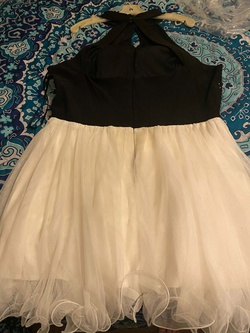 Black Size 20 Cocktail Dress on Queenly