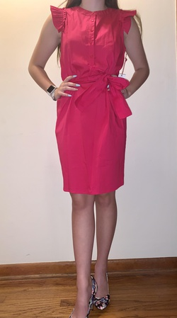 Gibson Pink Size 4 Interview Cocktail Dress on Queenly