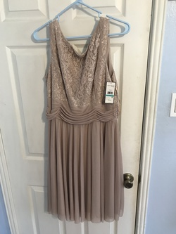 Jessica Howard Nude Size 16 Straight Dress on Queenly