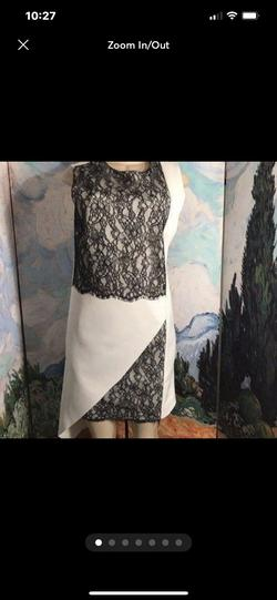 Robert Rodriquez Multicolor Size 4 Lace Wedding Guest Straight Dress on Queenly