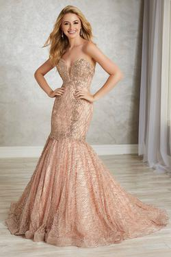 Style 16343 Tiffany Designs Pink Size 14 Tall Height Lace Mermaid Dress on Queenly
