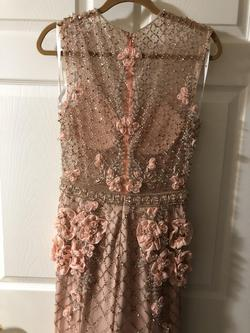 Terani Couture Light Pink Size 10 V Neck Train Dress on Queenly