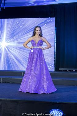 Ashley Lauren Purple Size 4 Plunge Sequin Pageant Jewelled A-line Dress on Queenly