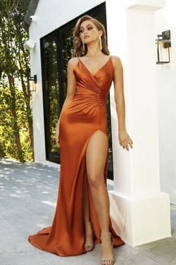 Lady Black Tie Orange Size 8 Fitted Plunge Train Spaghetti Strap Mermaid Dress on Queenly