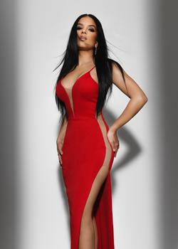 Fernando Wong Red Size 2 Fitted Sheer Plunge Spaghetti Strap Straight Dress on Queenly