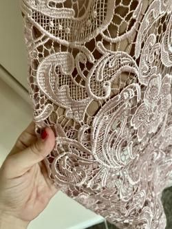 Dress the Population Pink Size 2 Nude Lace Jumpsuit Dress on Queenly