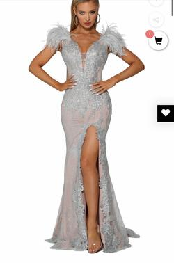 Portia and Scarlett Silver Size 6 Feathers Lace Backless Sheer Side slit Dress on Queenly