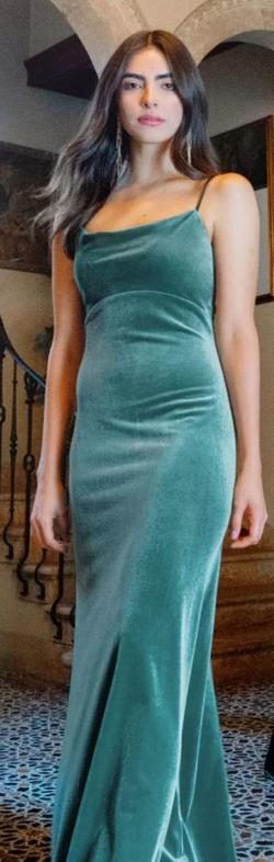 Jenny yoo  Green Size 16 Plus Size Bridesmaid Straight Dress on Queenly