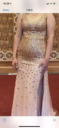 Nude Size 10 Mermaid Dress on Queenly