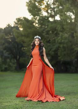 Gaspar Cruz Orange Size 4 High Neck Train Dress on Queenly